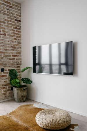 Vertical picture of big TV screen on clean white wall in modern living room with straw ottoman on cow skin rug and green potted plant in corner. Television in modern house or apartment