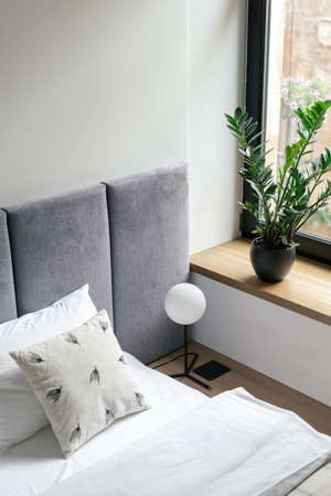 Bedroom interior, closeup at bed near room window. Comfortable home design with pillows, minimalistic style for apartment, hotel. Furniture for sleeping, relaxation. Houseplant at windowsill. Standard-Bild