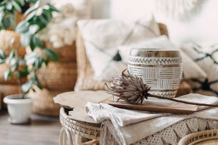 Selective focus on dry protea flower at bamboo coffee table in living room with blurred background. Home decor and wicker furniture in boho chic style interior Standard-Bild