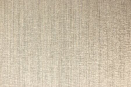 Light colored metal background or copy space.