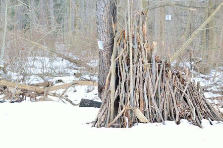afdak schuilen in het bos tijdens het winterseizoen.