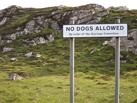 No dogs allowed sign, Hebrides, Scotland to safeguard sheep photo