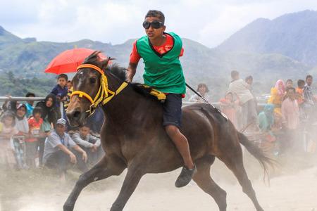 dashing: Horse Racing Dashing Trought The Dust