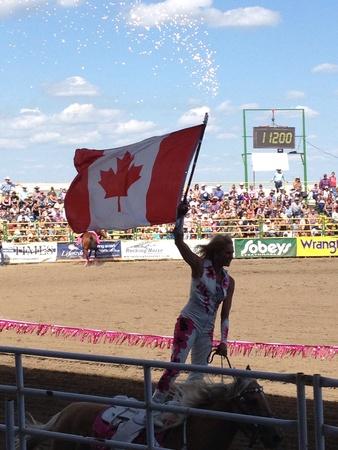 stampede: Stampede rodeo