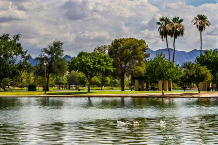 Trees around a lake at a park