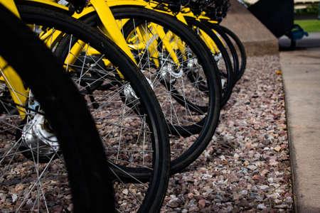 Bikes waiting to be rented Stok Fotoğraf