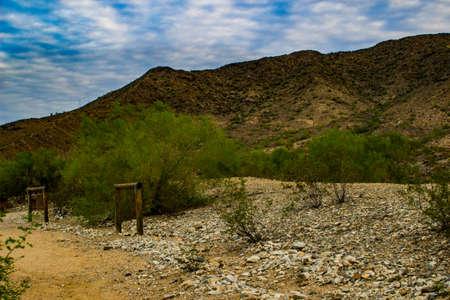 Horse hitch on a mountain trail Фото со стока