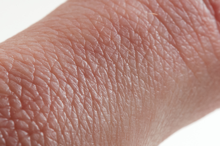 Macro of human skin on the hand with hair