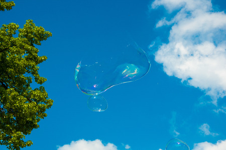 one round soap bubble on the blue sky, with trees in the background. Soap bubble caught just before the break