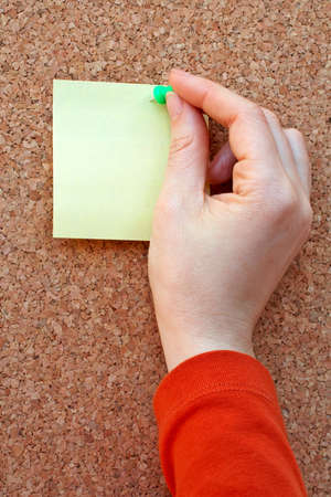 placing note in the cork board Stock Photo - 355818