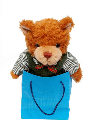 bear toy on a Shopping bag photo