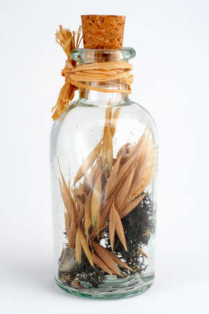 scent: Bottle of scent with cork white background