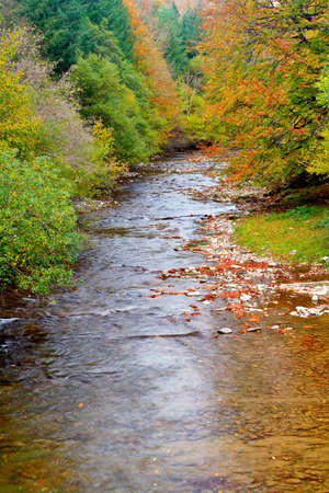 Fleuve de montagne en automne