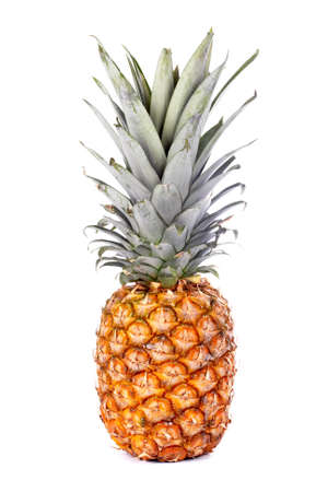calorie rich food: A colorful ripe pineapple on white background