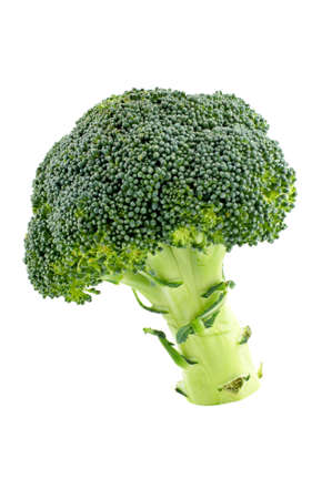 nourishment: Fresh and healthy broccoli isolated on white background