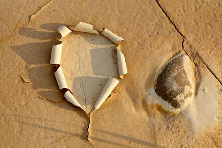 encogimiento: Silueta en la tierra seca cerca de la piedra  Foto de archivo