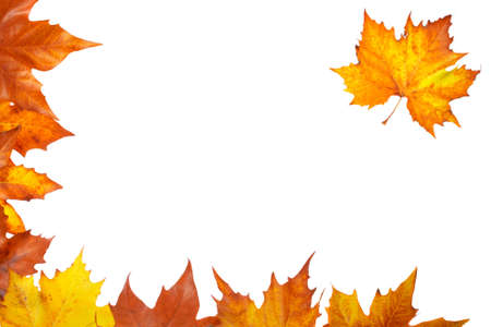 Colorful autumn corner made from leaves, isolated on white background photo