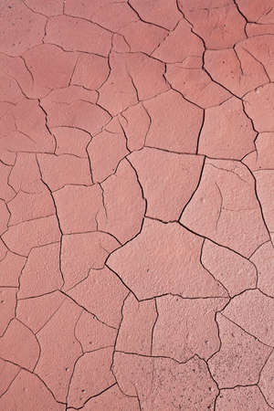 shrinkage: Close up of cracked ground. Global warming concept