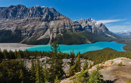 Peyto Lake,  Icefields Parkway, Banff National Park, Canadian Rockies, Alberta, Canada