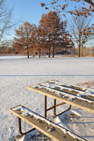 View from the park in wintertime. photo