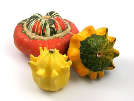 pumpkin at decoration and compositions of vegetables