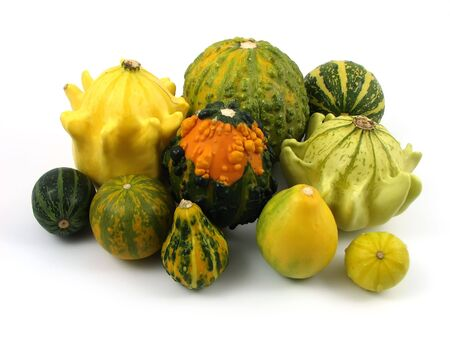 pumpkin at decoration and compositions of vegetables Stock Photo - 1878902