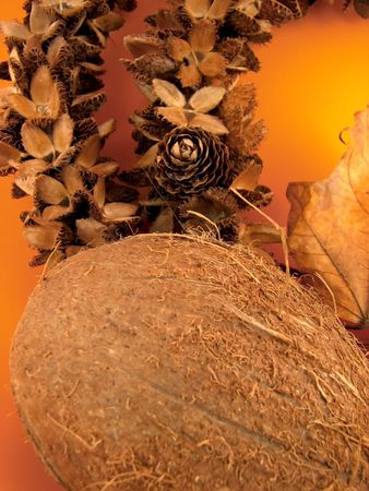 Coconut and cone on orange background, decoration