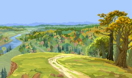 horizon over land: autumn forest landscape Illustration