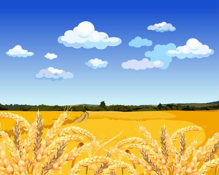 Landschap geel veld met tarwe Stock Illustratie