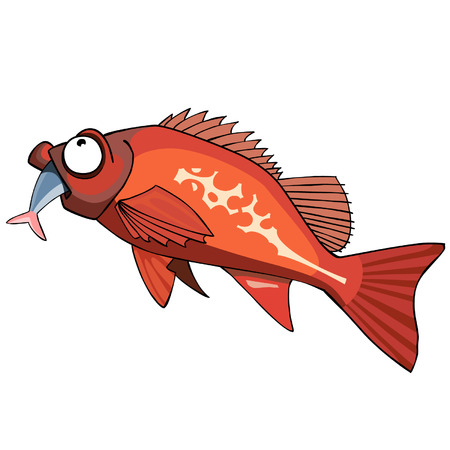 cartoon red grouper fish eating
