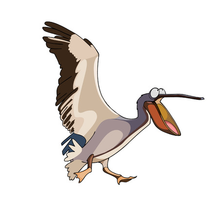 beak: cartoon bird pelican runs with open beak Illustration