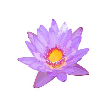 sepal: lotus flower lilac