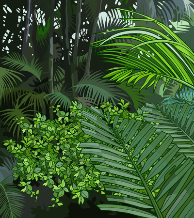 background jungle of tropical plants