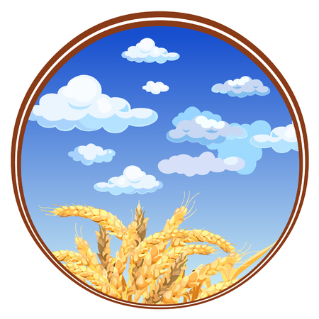 oat field: spikelets against the sky in a circle Illustration