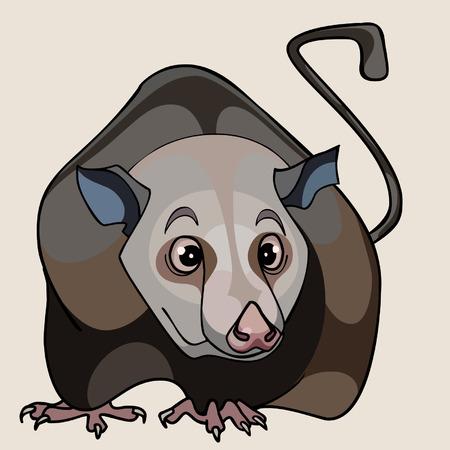 marrom: desenhos animados do rato marrom
