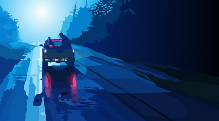 goes: Car pickup goes on night road