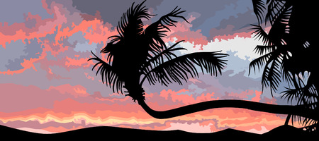 sunset palm trees: silhouette of palm trees at sunset Illustration