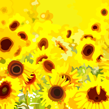 sunflower field: background field with yellow flowers sunflower