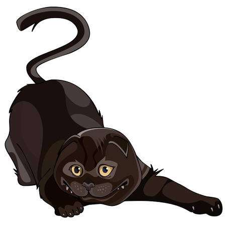 lop: cartoon black lop-eared cat twisted