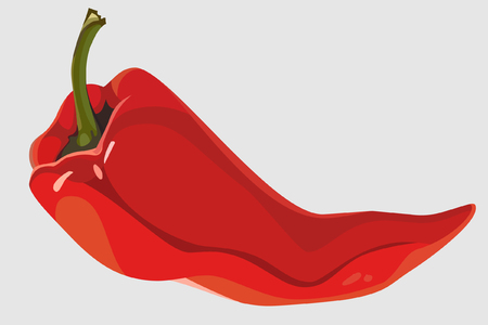 painted red pepper pod lies Illustration