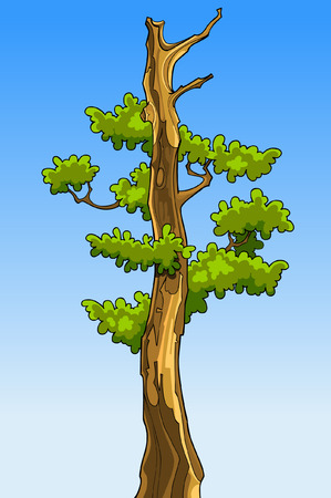 cartoon tree with leaves without tops