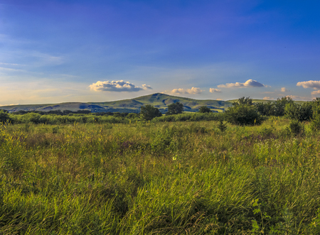 The overgrown field in the foothills against the background of the peaked hill, over which white clouds. Krasnodar Krai, Kuban, Russia.