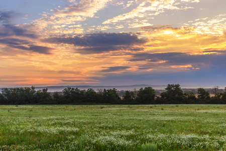 kuban: The summer field with a grass, on the second plan a dark strip of trees, behind which also the field and the wood in the foothills. The sky with the clouds painted in orange color. Krasnodar Krai. Stock Photo