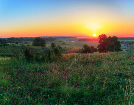 Landscape from the beginning of day in the summer. Holmity area, still twilight. And over this abundance of herbs and separate trees there is a bright sun. Russia, Krasnodar Krai, Kuban. Stock Photo