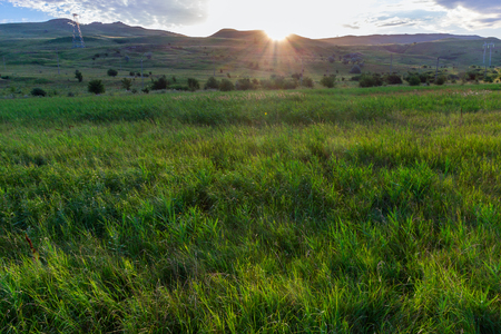 The sun comes because of the mountain to the meadow covered with a green grass. In the distance not numerous trees. Krasnodar Krai, Kuban.