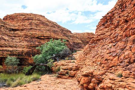 King's Canyon, Northern Territory, Australia Stock Photo