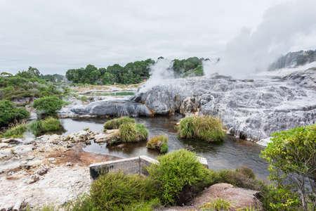 Te Puia Geothermal Valley, Rotorua, North Island, New Zeland