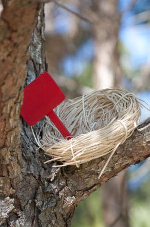 Nest in Tree with Blank Sign for you to add text.  Works well with for sale, for rent, welcome home, empty nest, etc. photo