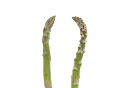 realtionship: Pair of Asparagus Mingles on a white background.