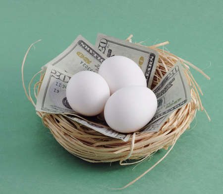 nest egg: Nest with money ($20 dollar bills) and eggs. Can symbolize a variety of things dealing with the economy andor stock market such as